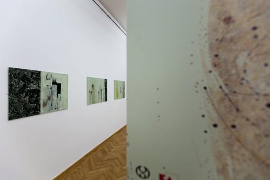 Iain Patterson v Ostravě, foto Antonín Dvořák, 2016