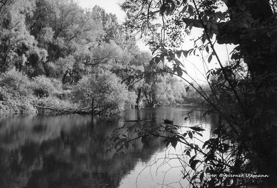Zelená voda pod Landekem / foto (c) Werner Ullmann