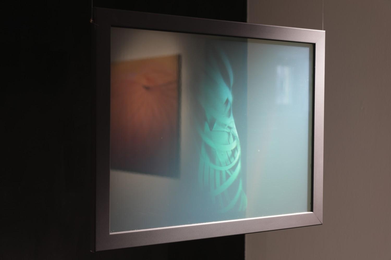 Fotografie k článku Výstava Shadow over Light výtvarnice Katalin Haász v Moravské Ostravě